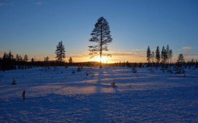 LAPLAND? Why On Earth Lapland?